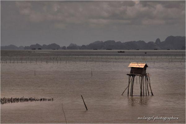 Le carrelet de la Baie d'Halong