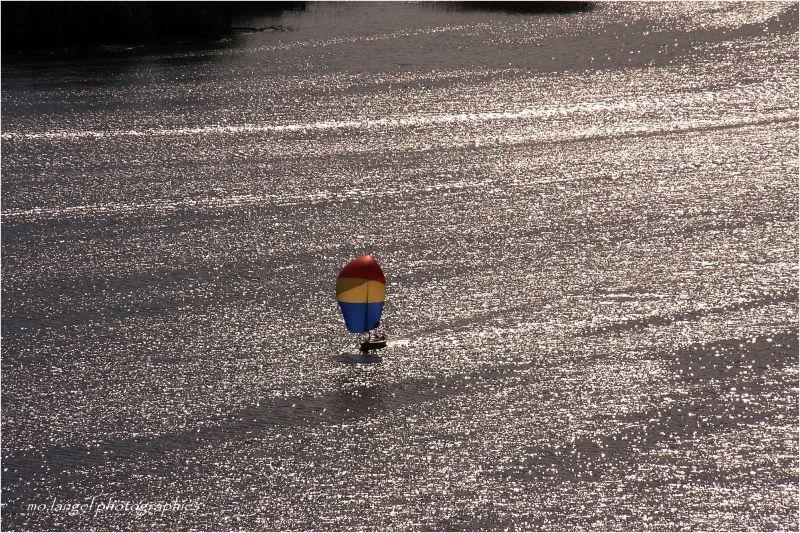 Voguer sur le lac argenté