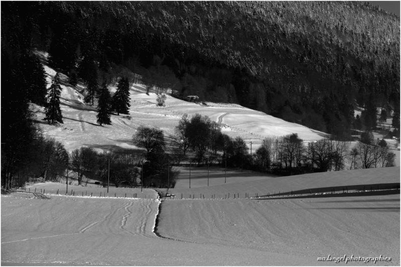 La campagne sous la neige