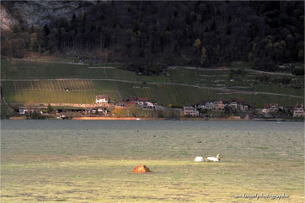 Eclaircie sur le lac