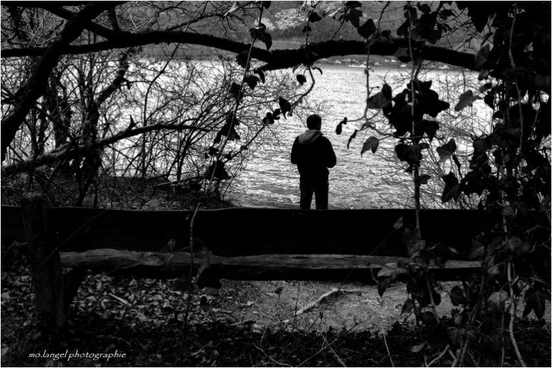 Le rêveur du bord du lac