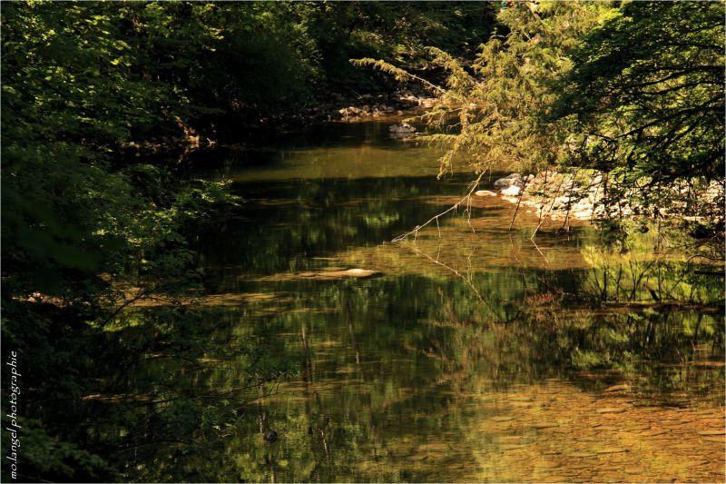La rivière aux reflets