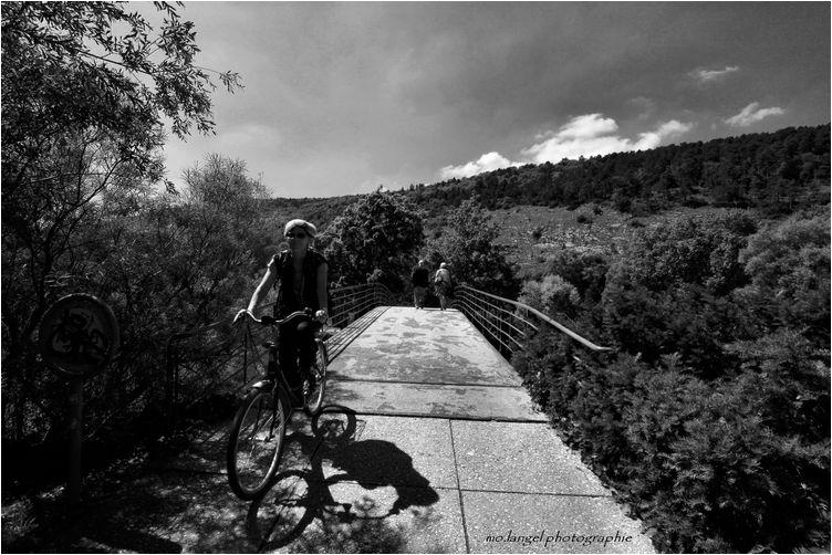 La dame à vélo