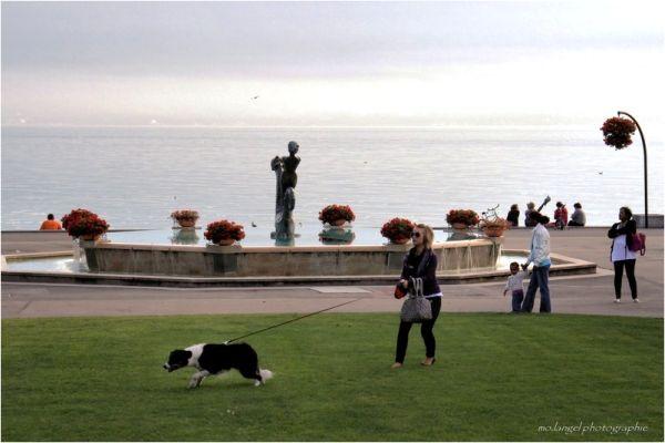 la fille et le chien ...