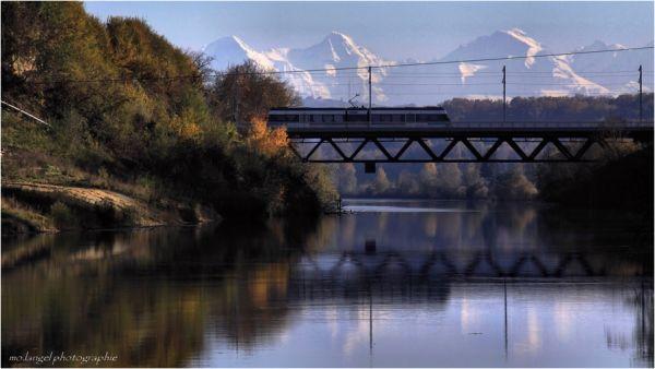La rivière (4)