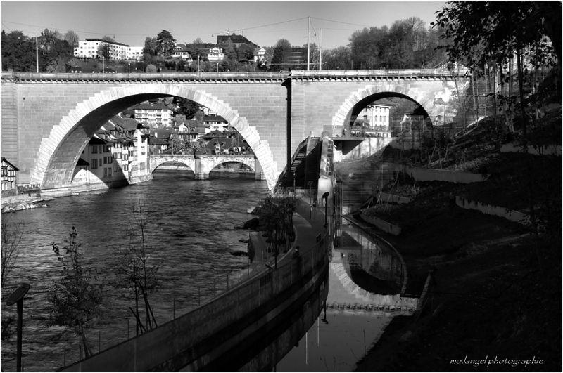La rivière (5)