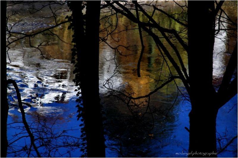 La rivière (6)