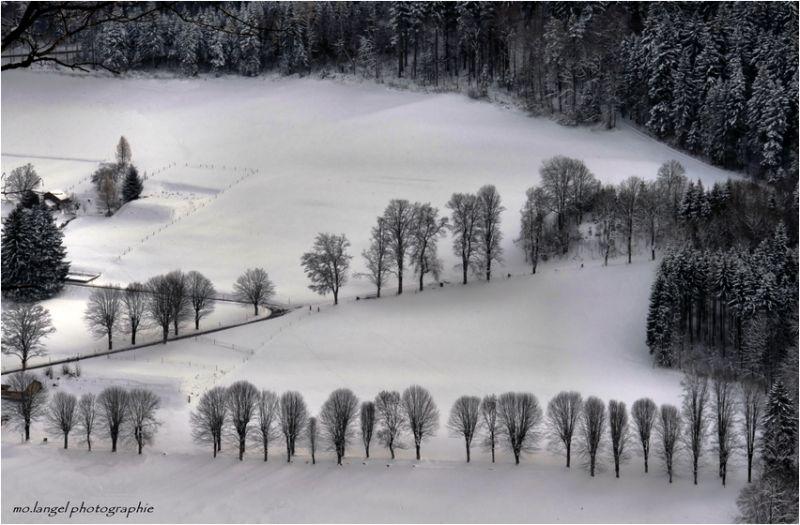 Graphisme hivernal