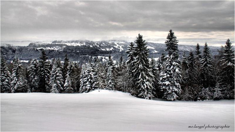 Sur les hauteurs du Jura