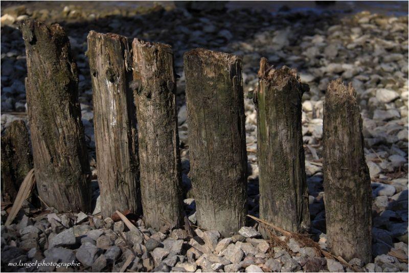 Les poteaux de la petite plage