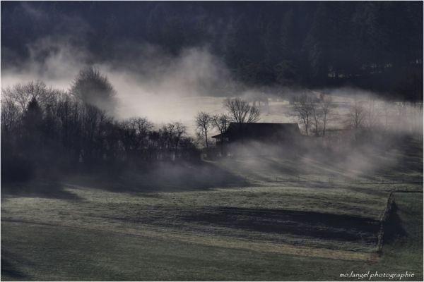 Brumes matinales dans le vallon #1