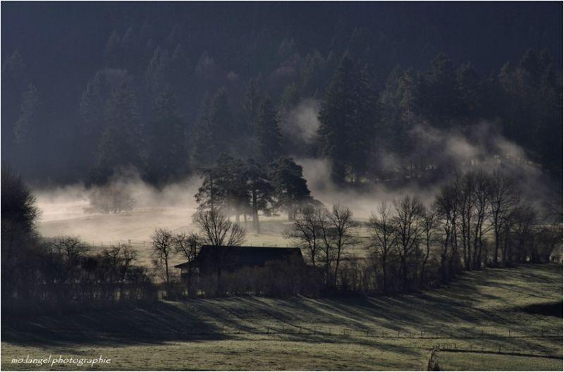 Brumes matinales dans le vallon #4