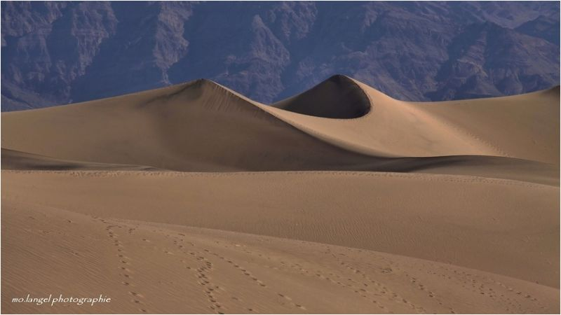 Duo de Dunes