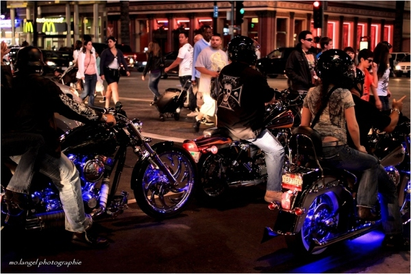 The Bikers of Hollywood