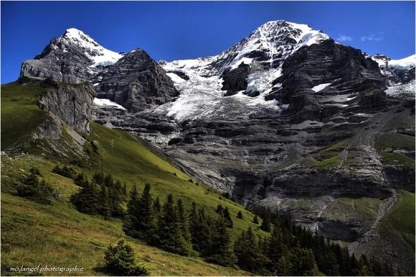 Le glacier entre les montagnes