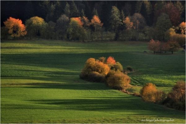 Couleurs d'automne #2