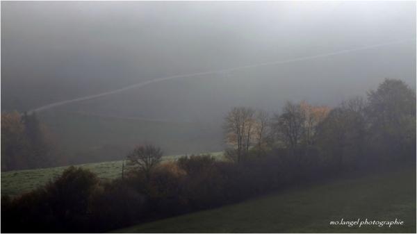 La campagne sous la brume