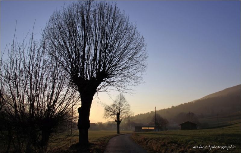 Sur le chemin du village