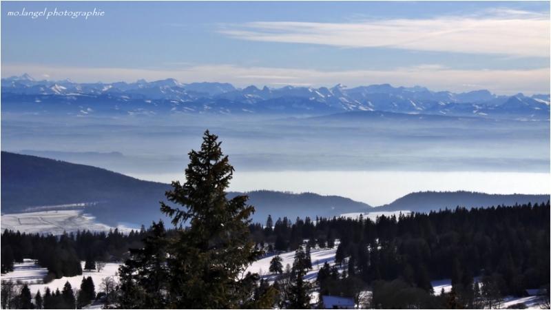 Vue sur les Alpes