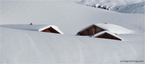Engloutis sous la neige