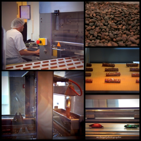 Fabrication des branches de chocolat