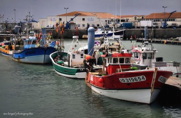 Les bateaux de pêcheurs