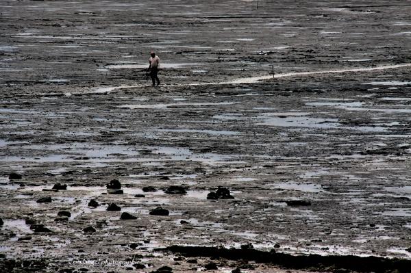 A la recherche des trésors de la mer