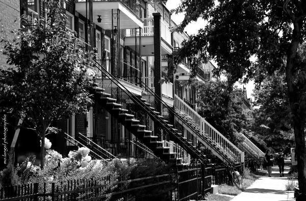 Les escaliers II