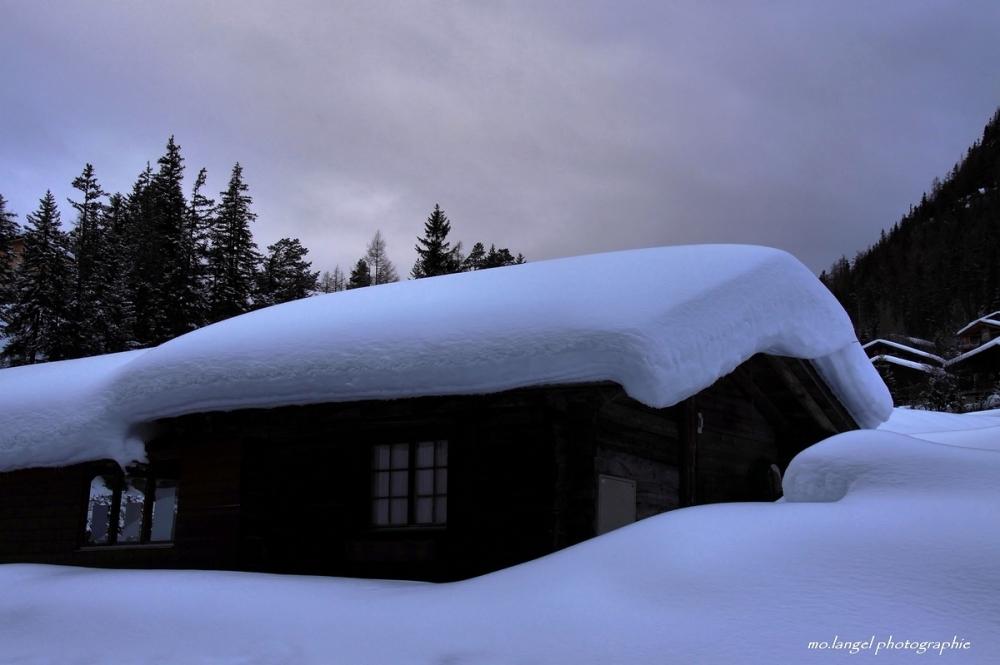 Sous son duvet de neige