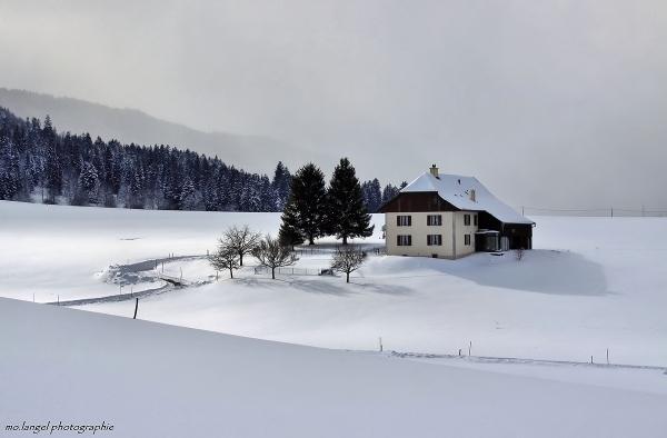 Décor hivernal