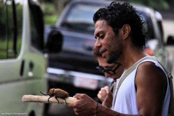 Le montreur de scarabée