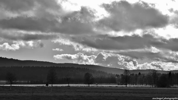 La chevauchée dans la campagne