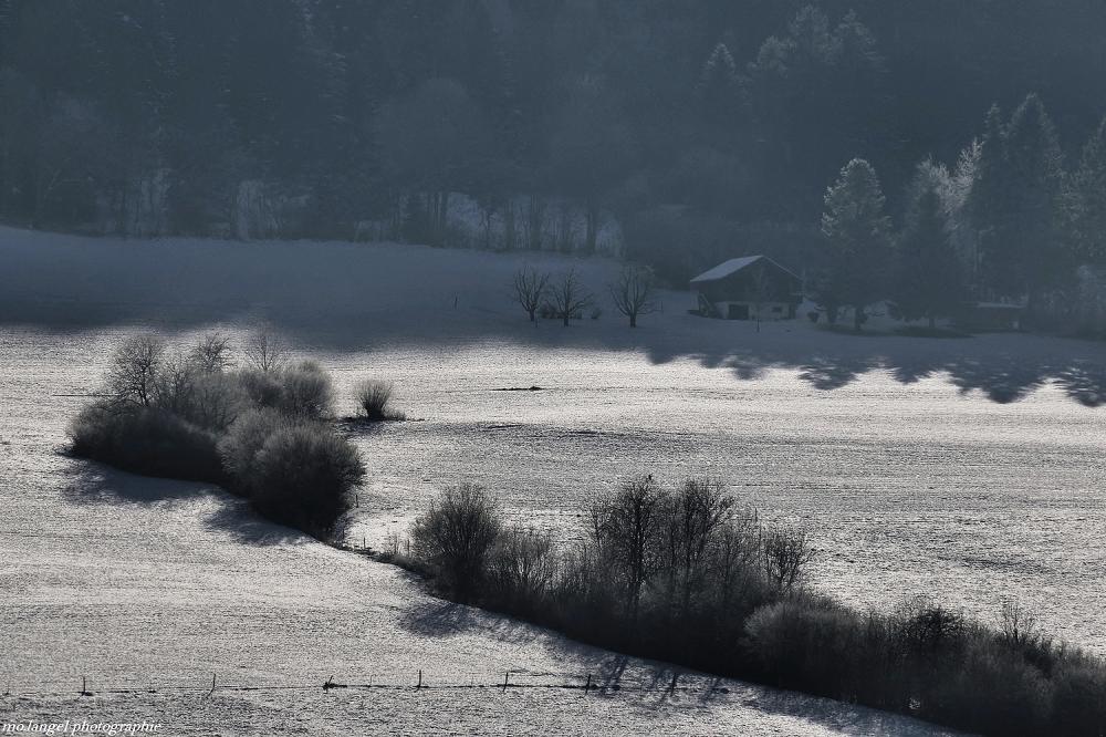 La campagne sous son léger manteau blanc