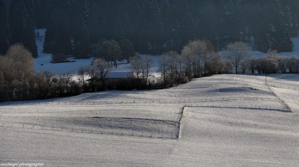 La campagne sous son léger manteau blanc #2