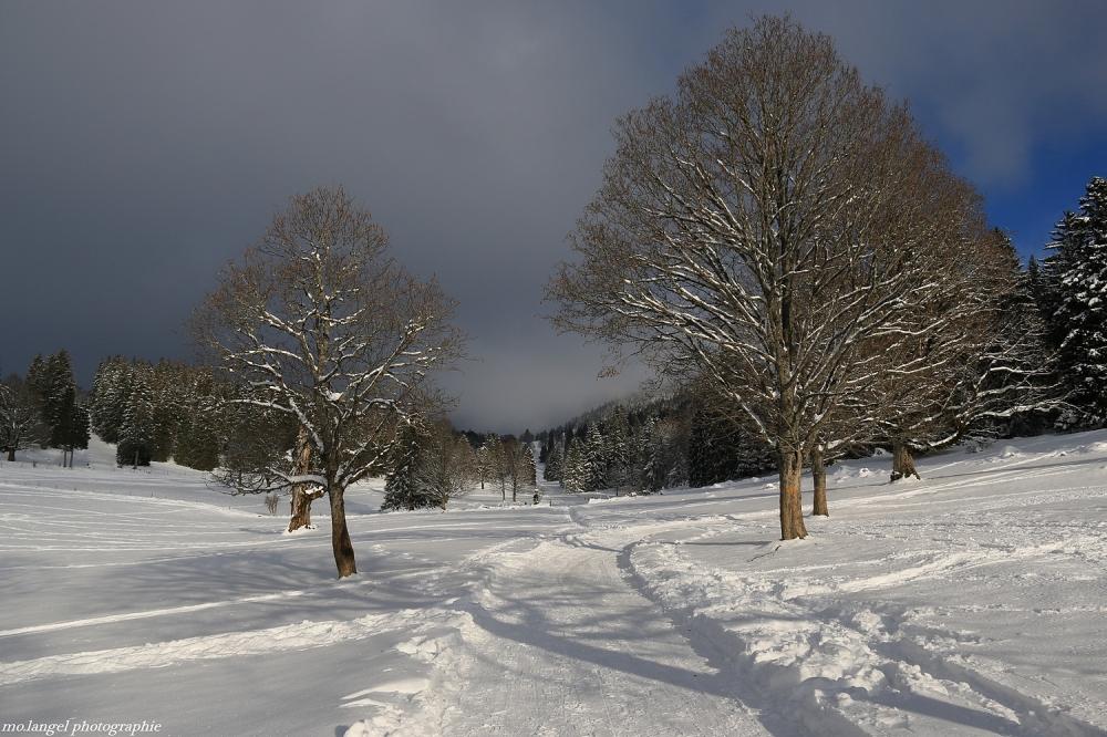 L'hiver fait son entrée