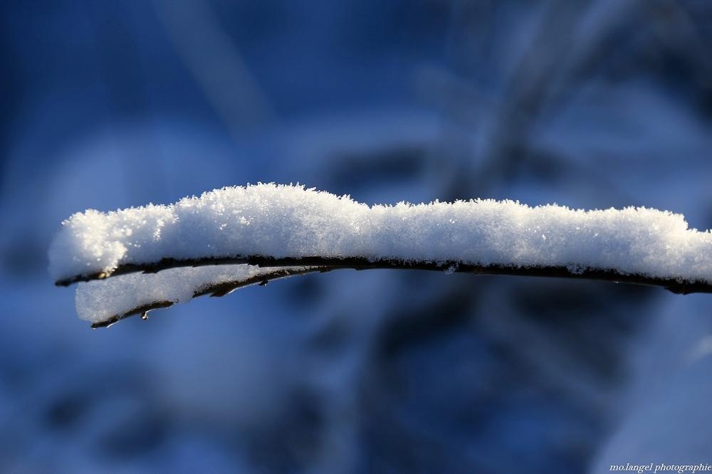 Poudre de neige