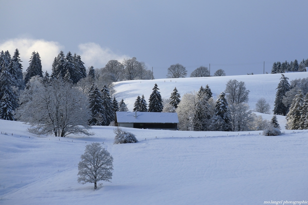 Douceur au pays hivernal