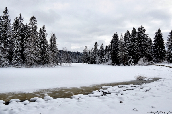 L'étang sous son blanc manteau
