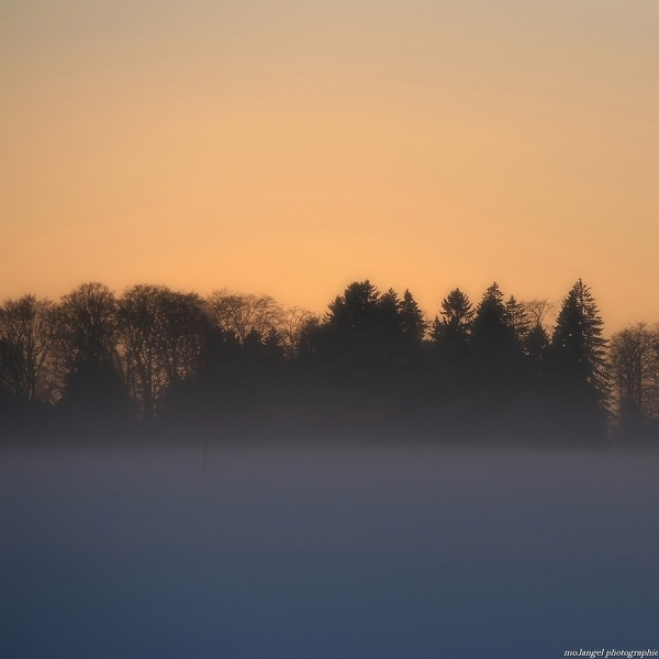 Sunset in the mist