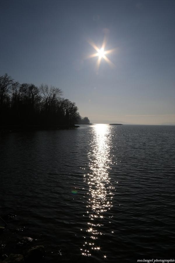 Scintillement sur le lac