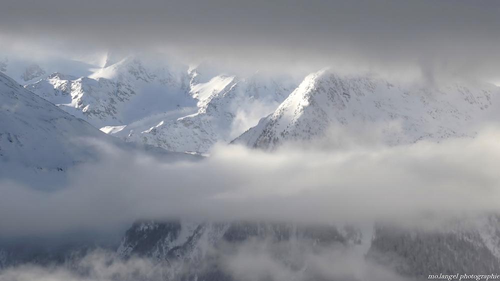 Entre les voiles de brume