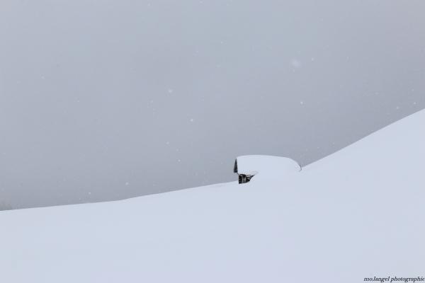 Sous son manteau de neige
