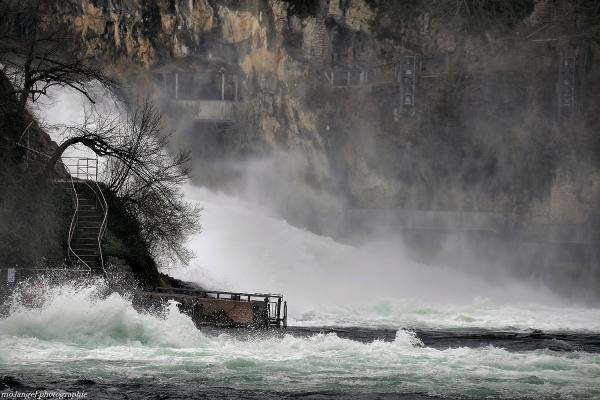 Les chutes du Rhin #2