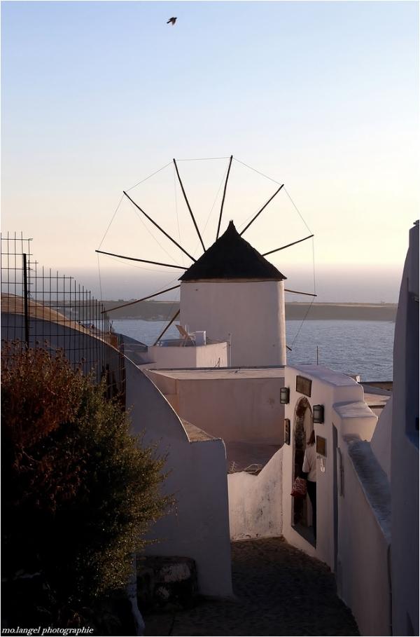 Le moulin et l'oiseau
