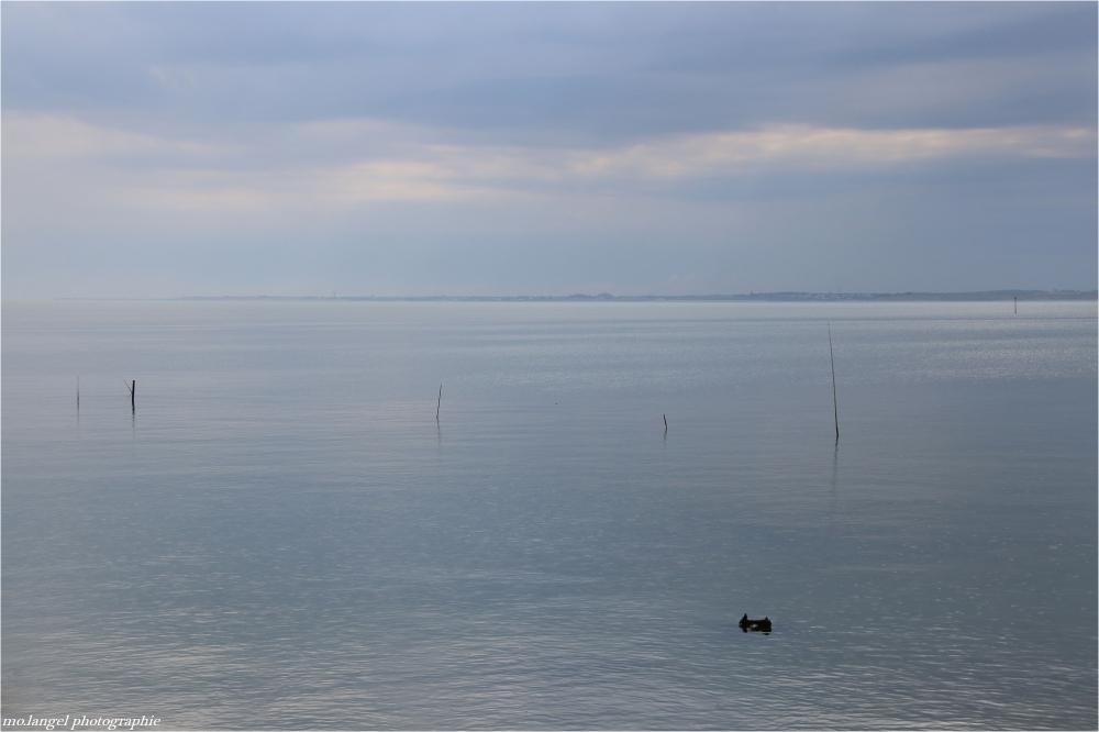 Douceur océane