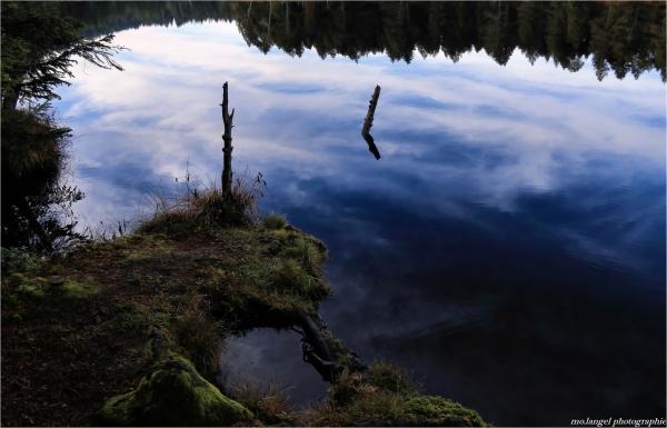 le ciel dans l'étang