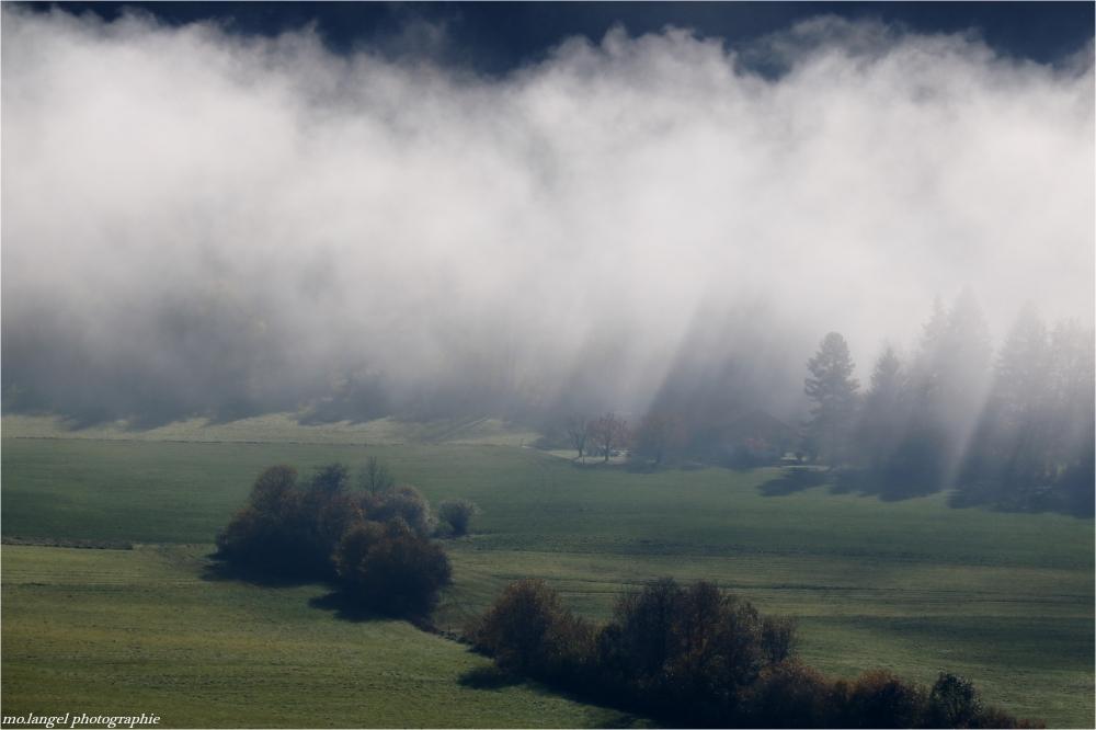 La brume se lève