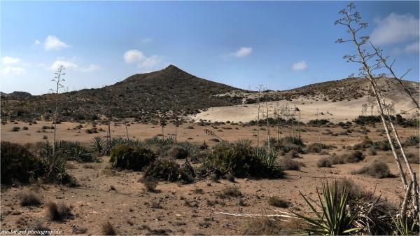 Le désert #2