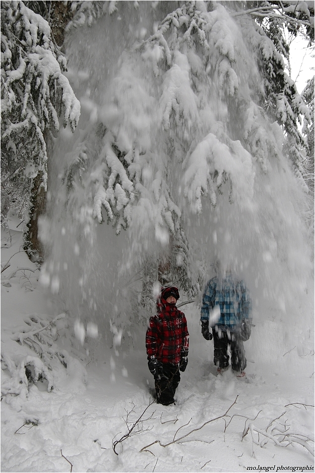 Les joies de l'hiver