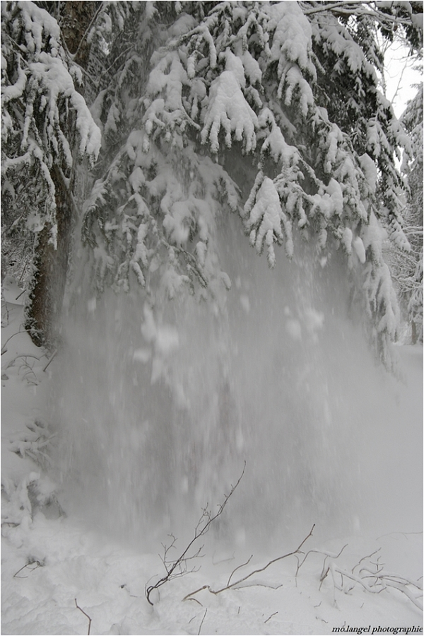 Les joies de l'hiver ... suite de hier!